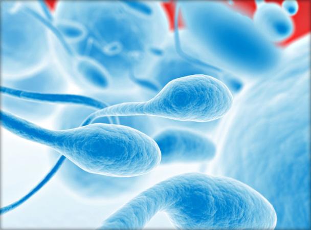 hogyan lehet parazitákat gyógyszerekkel kezelni