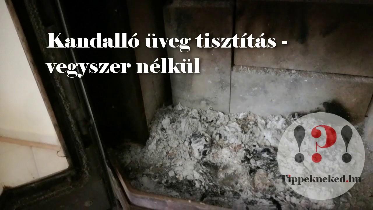 """Paraziták házi hamu kezelése. 4 Replies to """"Férgek kenyér mellkasi eltávolítása"""""""