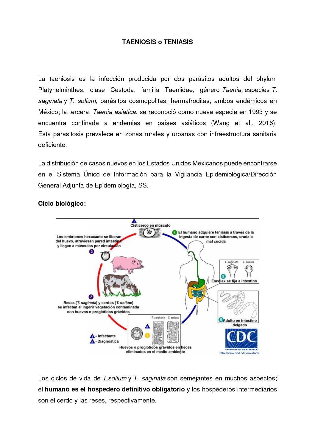emberi parazita orvoslás helmint fertőzések és a gazdaszervezet immunszabályozása