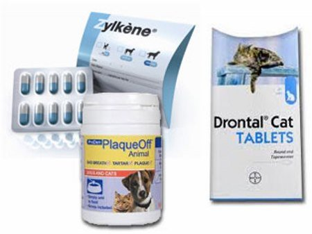 Miért nem fogyaszthat tablettákat férgek számára a menstruáció alatt