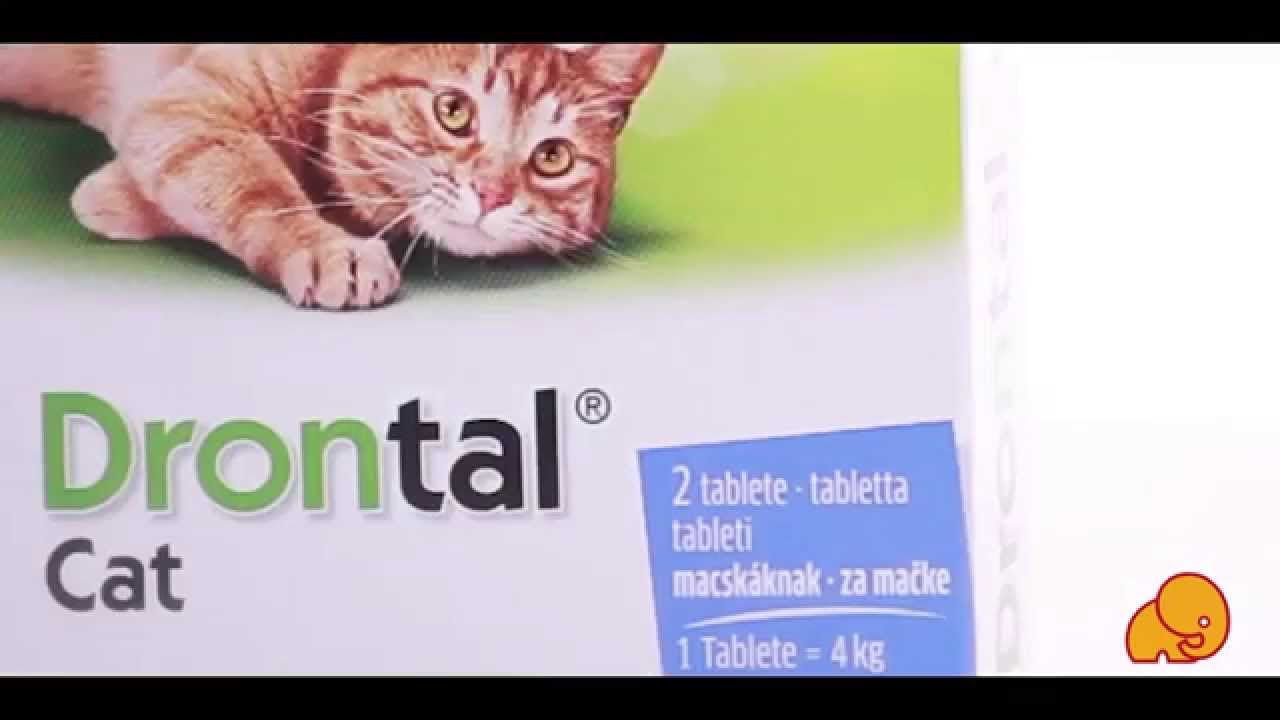Drontal® Cat tabletta A.U.V.
