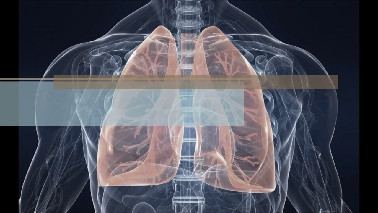 Aszcariasis ápolás - Strongyloidosis laboratóriumi diagnózis