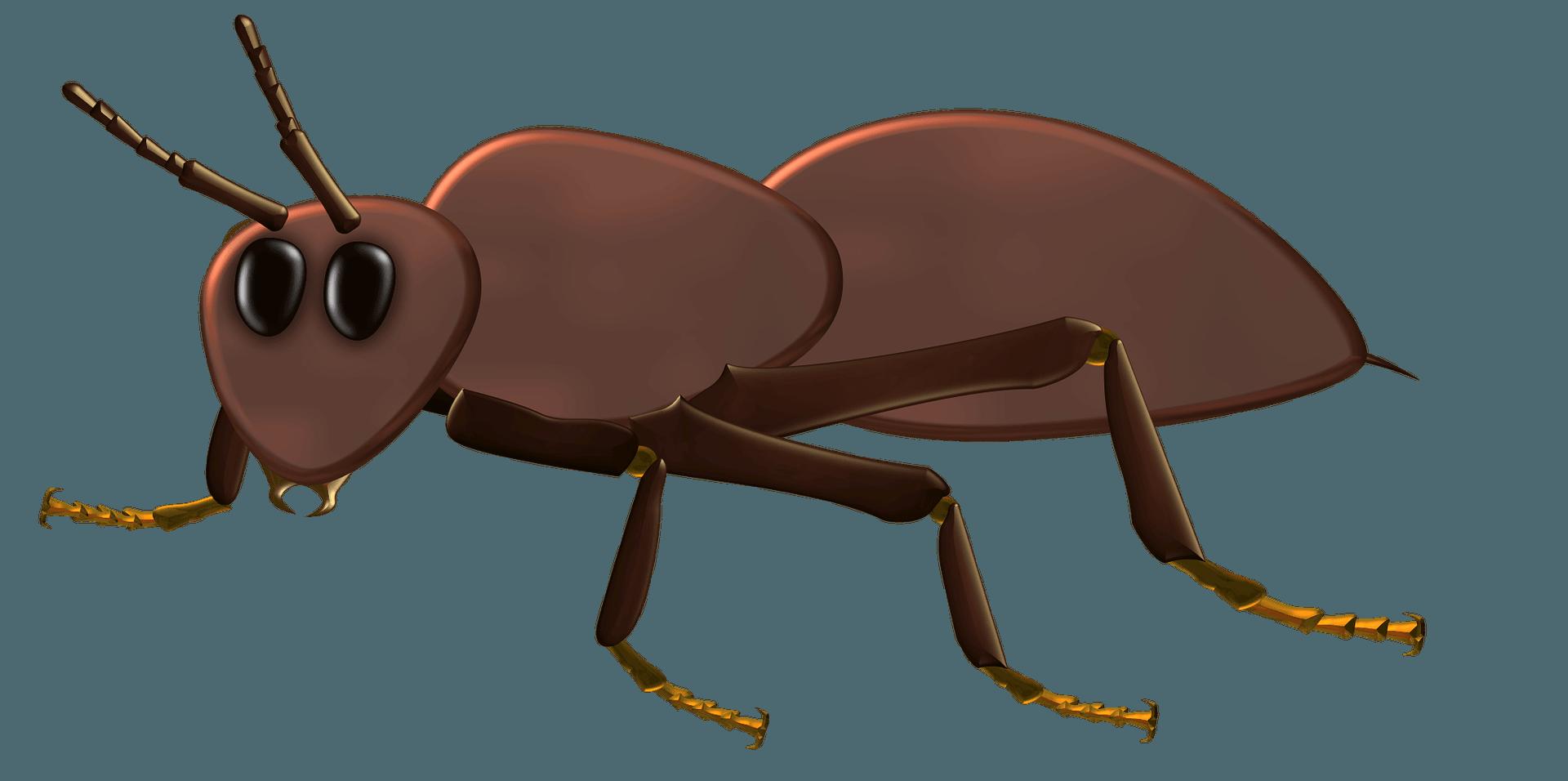 enterobiasis inkubációs periódus mennyi pinworm gyermekek