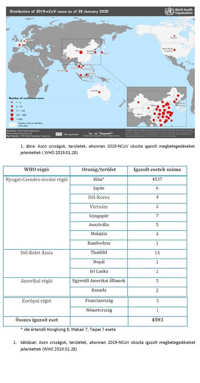 Helminthiasis táblázat. Féregpete- és protozoonvizsgálat | Lab Tests Online-HU
