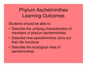 Phylum aschelminthes ascaris képek