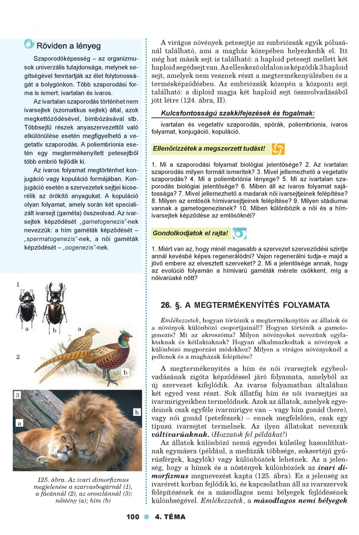Bélférgek, bélférgesség Bélparaziták emberekben fertőzőek