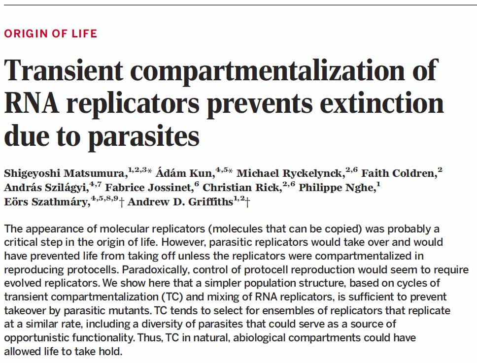 a parazita fű megelőzése nem síkbeli platyhelminthes