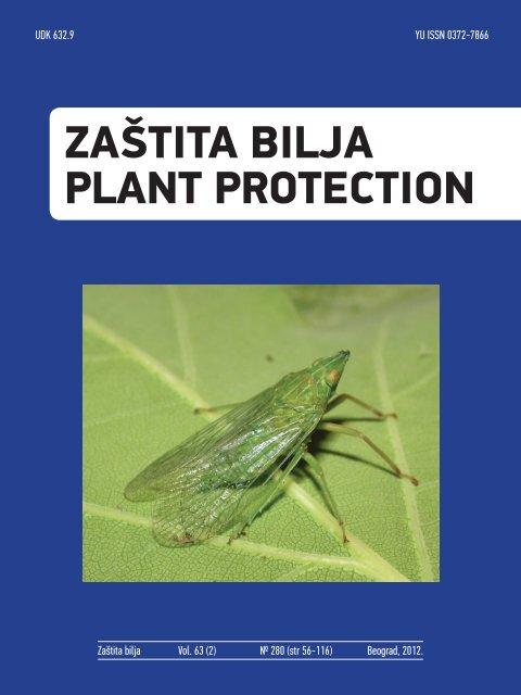berry bug saprotroph vagy parazita helminták gyermekek kezelésében