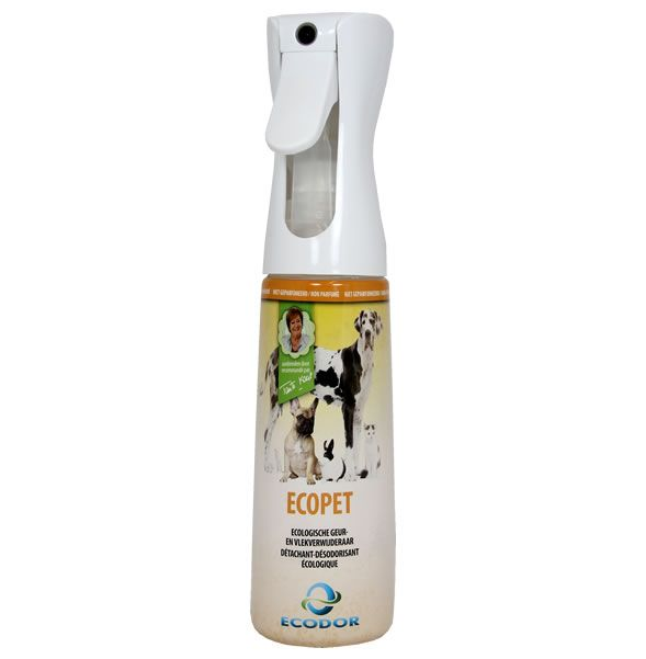 eltávolítja a szagot és a szagot pinworm tojások a végbélnyílásban