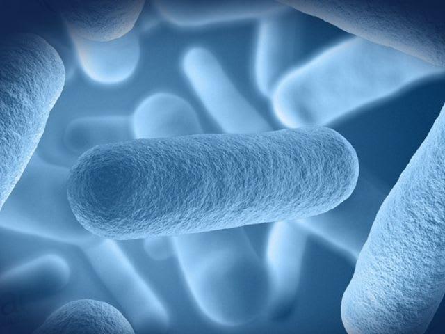 probiotikumok rossz lehelet a legegyszerűbb tabletták férgektől