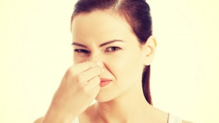 rossz lehelet panaszai platyhelminthes idegrendszer