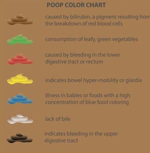 Így jelzi a betegségeket a székletünk színe!