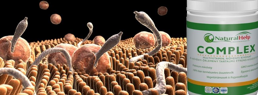 parazita kezelés száraz gyógynövényekkel népi gyógyszerek a máj tisztítására a parazitáktól