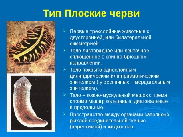 a paraziták alkalmazkodása a parazitizmushoz)