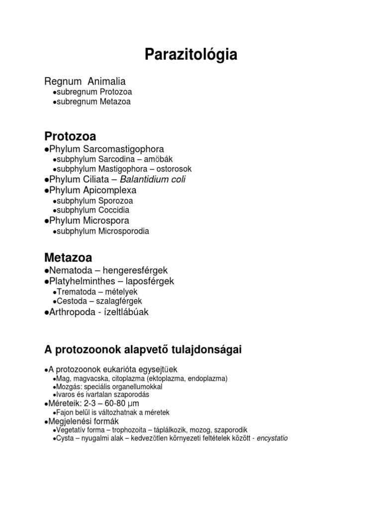 Galandférgek – Wikipédia