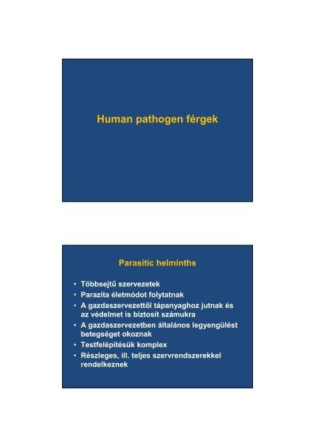 Enterobiasis (pinworms) - Egészség