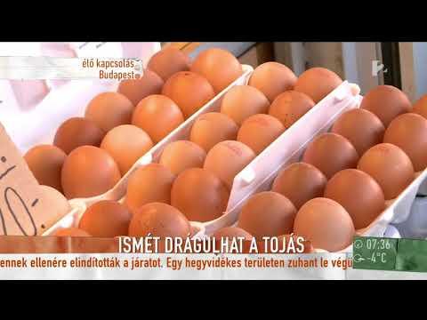 tojás giardiasissal